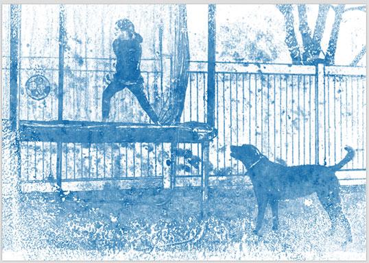 Meisje met de hond, Tim Van den Abeele illustrator